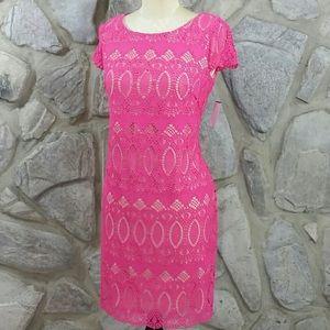 NWT Eliza J. Pink Lace Dress